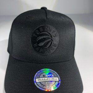 Mitchell & Ness Flexfit 110 NBA Toronto Raptors All Black Logo Snapback OSFA