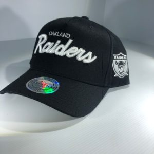 Mitchell & Ness Flexfit 110 NFL Oakland Raiders Team Script Colour POP Snapback OSFA